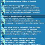 Frases Reflexivas Cortas