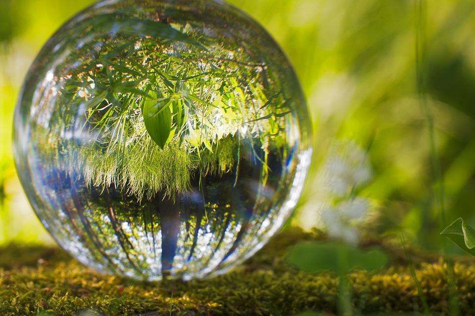 Reflexiones sobre el medio ambiente cortas